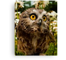 Ozzy 2 Cute Canvas Print