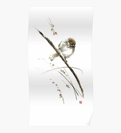 Little bird on branch watercolor original ink painting artwork Poster