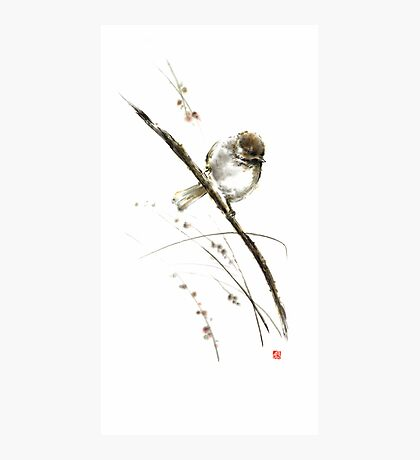 Little bird on branch watercolor original ink painting artwork Photographic Print