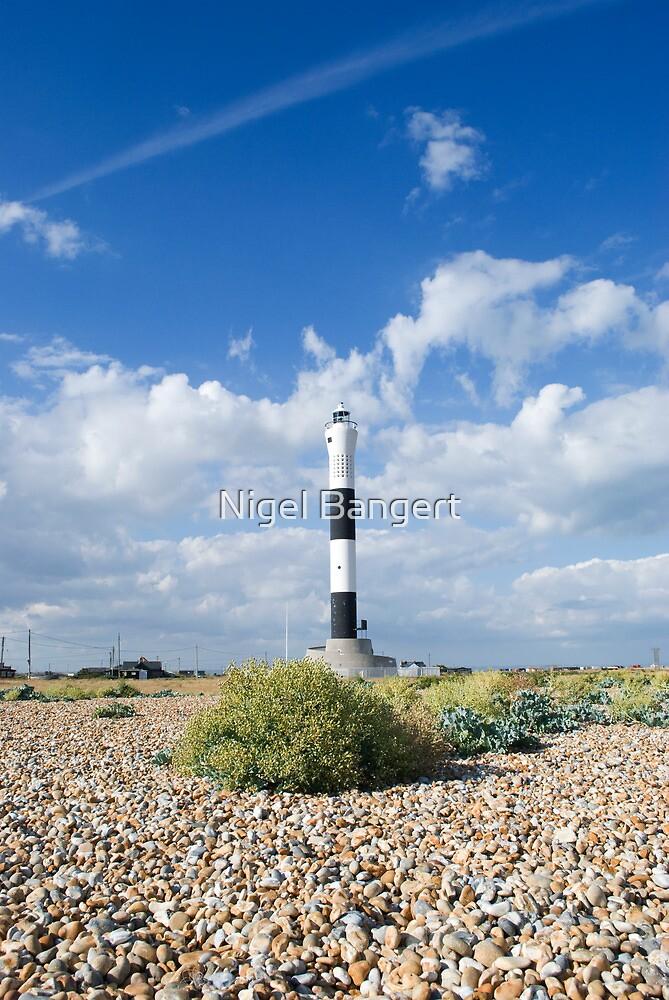 Dungeness Lighthouse by Nigel Bangert