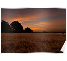 Sunrise in the Country Poster