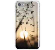 Sunset through the grass iPhone Case/Skin