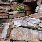 Rocks  by WildestArt