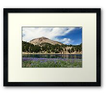 Lupines Lake And Lassen Framed Print