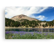 Lupines Lake And Lassen Canvas Print