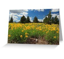 Wildflowers Junipers And Antlers Greeting Card