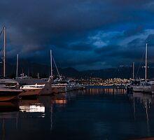 Blue Hour - Stanley Park Marina, Vancouver, British Columbia, Canada by Georgia Mizuleva