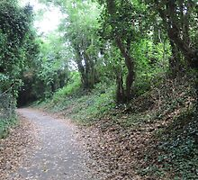 Hiking in Howth, Ireland by nilesite
