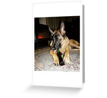 You can lead a German Shepherd to beer....but Greeting Card
