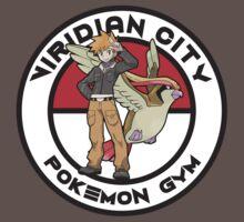 Viridian City Pokemon Gym by Zanzabar7