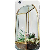 little sister's super succulents iPhone Case/Skin