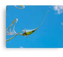 pin-sky cushion Canvas Print