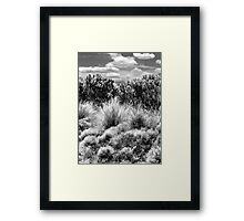 Great Ocean Road Framed Print