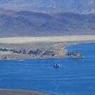 Pyramid Lake Sutcliffe Nevada USA by Anthony & Nancy  Leake