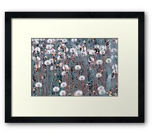 Small Little White Fuzzy Things Framed Print