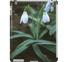 Crimean Snowdrop Closeup iPad Case/Skin