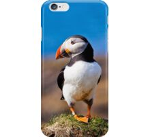 Puffin Standing on Cliff in Treshnish Isles in Scotland iPhone Case/Skin