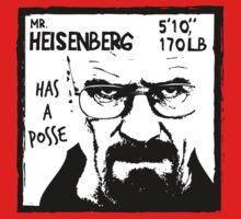 Mr. Heisenberg Has A Posse by IsonimusXXIII