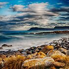 Cloudy Bay by Paul Amyes