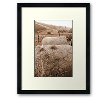 old round bales in Irish countryside Framed Print