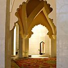 Sultan habitat by freshairbaloon