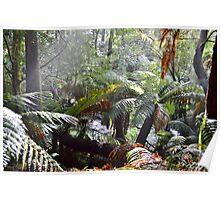 Wild Tasmania Poster