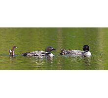 Welcome to the looniverse! Common Loons Photographic Print