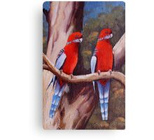 A BIRDS LIFE Canvas Print