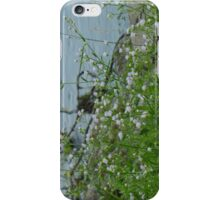 Riverside Pretty iPhone Case/Skin