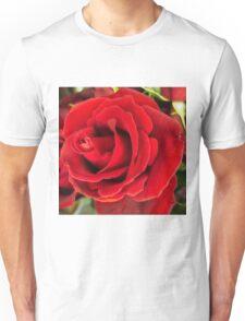 Beautiful rich red rose Unisex T-Shirt