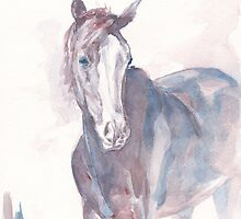top tornado horse watercolor painting by sylwia dudaczyk