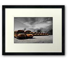 Yellow school buses on a parking lot  Framed Print
