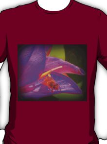 Bumble Bee Revisited T-Shirt