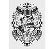 Hipster Mustache Cat Photographic Print