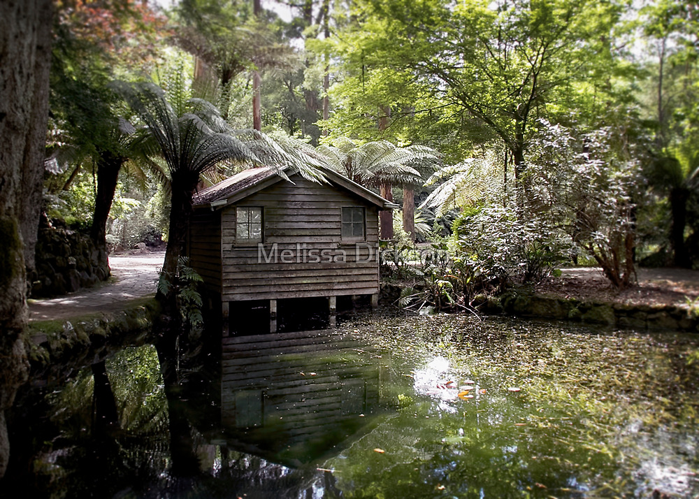 Alfred Nicholas Boat Shed by Melissa Dickson