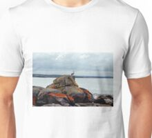 Pelican Perched on Rocks Unisex T-Shirt