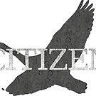 Citizen Goose by Cats 13