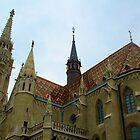 Matthias Church - Budapest, Hungary by Robert Phelps
