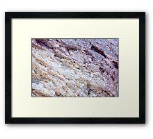 D60 / Nikkor 55mm - 7 Framed Print