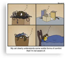 Sleeping habits of cats. Canvas Print