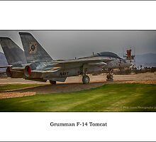 Palm Springs Air Museum - Grumman F-14 Tomcat (Colour) by Phill Jones