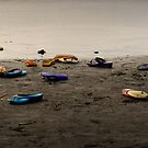 beached thongs by wellman