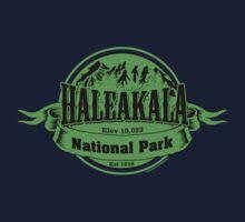 Haleakala National Park, Hawaii One Piece - Long Sleeve