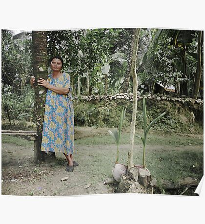 woman and her 2 young coconut trees Poster