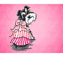 Girly Schnauzer Pink Dress Photographic Print