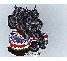 Black Schnauzer Blanket Buddy Photographic Print