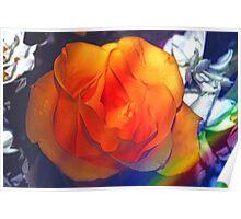 Gold rose 2 Poster
