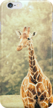 Giraffe Portrait by PatiDesigns