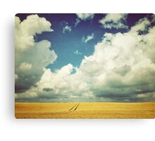 Into the Great Wide Open Canvas Print