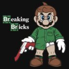Breaking Bricks by RyanAstle